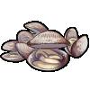 Thumbnail popup clams