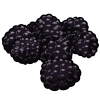 Thumbnail popup blackberries