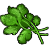 Thumbnail popup cilantro