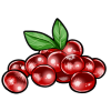 Thumbnail popup cranberries