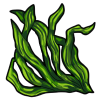 Thumbnail popup seaweed