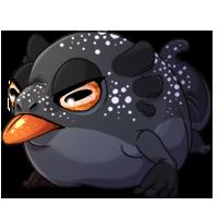 Kith frog 1 black sm