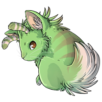 Kith 1green