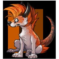Kith wolf orange2 200
