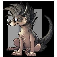 Kith wolf grey2 200