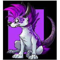 Kith wolf purple2 200