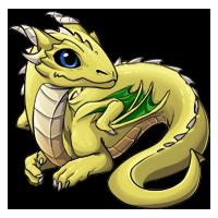 Kith dragon stage 2 03 yellow200