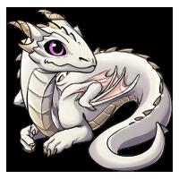 Kith dragon stage 2 08 white200