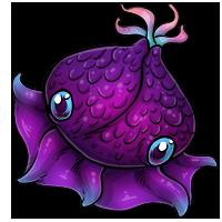 Kith purple
