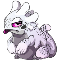 Kith frog 2 white sm
