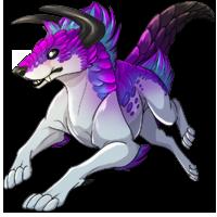 Kith wolf purple3 200