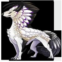Kith wolf white4 200