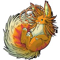 Kith orange