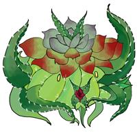 Kith succulentmortis