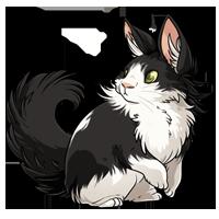 Kith kith bumblekittee kittencatleslie