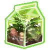 Thumbnail popup recycled terrarium fern
