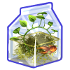 Thumbnail popup recycled terrarium aquatic plant