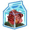 Thumbnail popup recycled terrarium rose